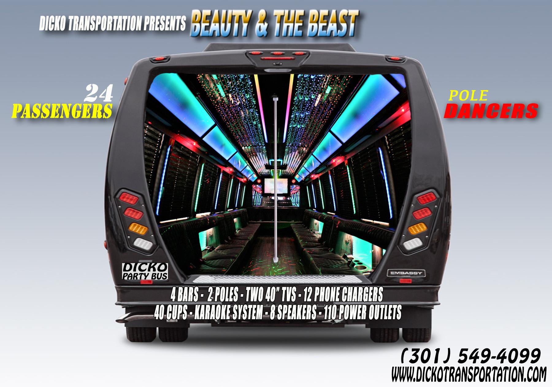 Dicko Transportation 24 Passengers party bus